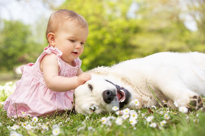 DogBabies-Khurki.net.7