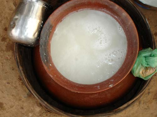 white rice Beer