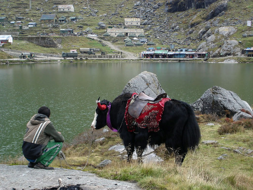 Tsomgo_Lake