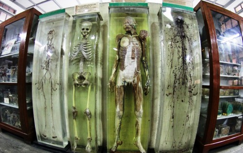 bangkok-forensic-museum-2