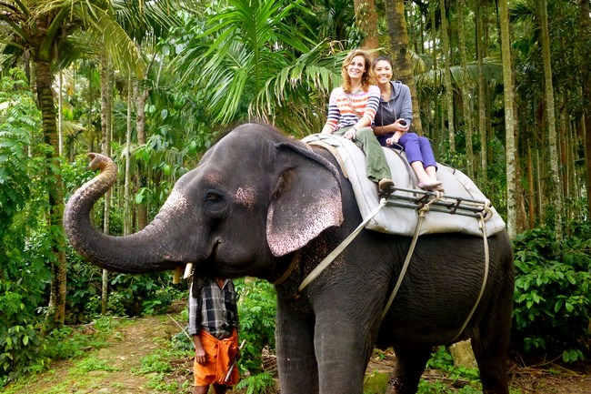 ElephantRideinKerala
