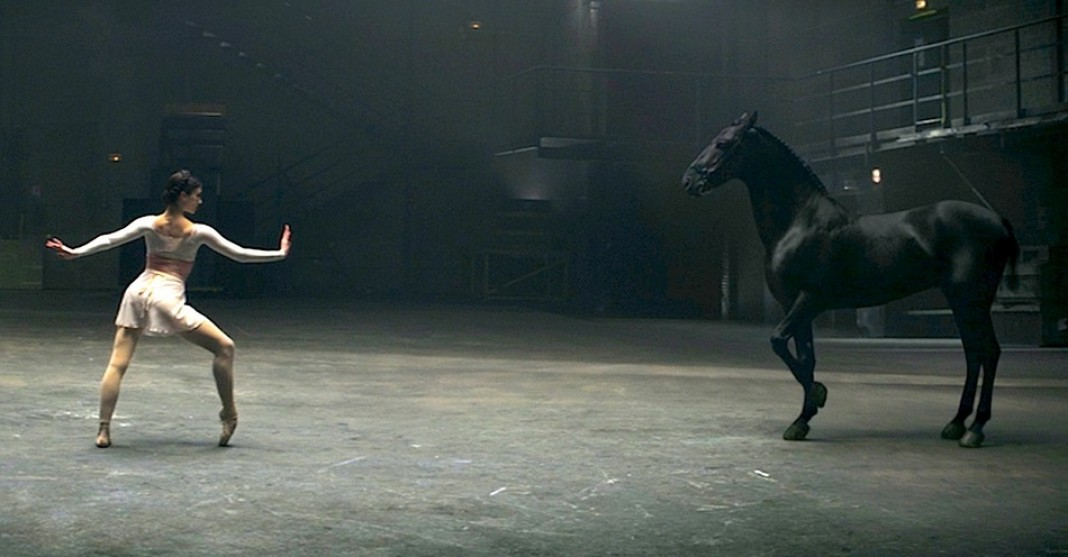 horse ballerina