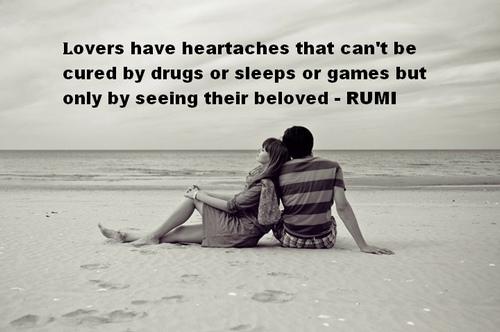 Rumi 6