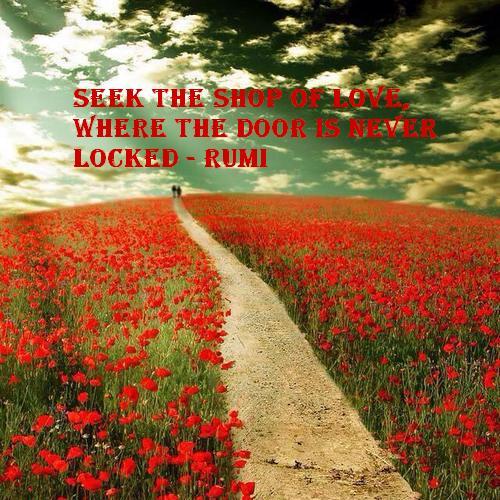 Rumi 7