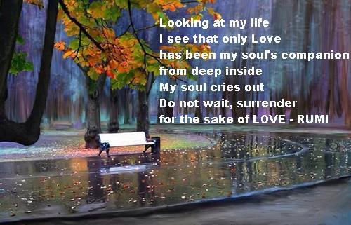 Rumi 9