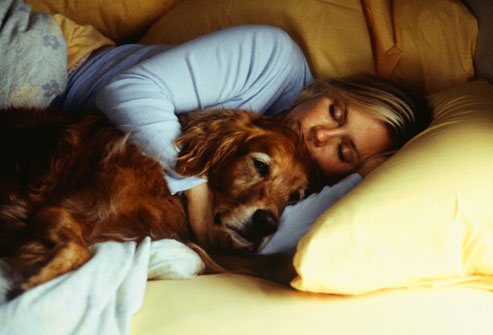 woman_and_dog_sleeping