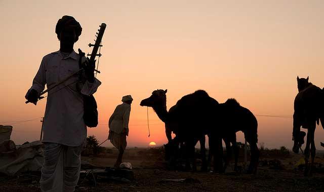pushkar-camel-safari-khurki.net