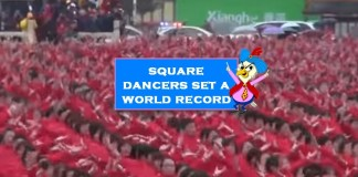 new guinness world record