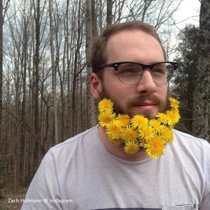 Beard Guy9