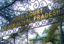 Shimla MC